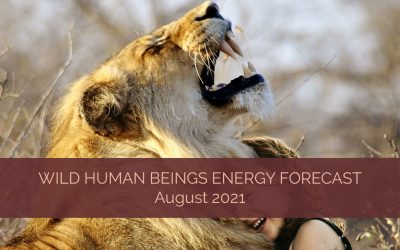 Wild Human Beings Energy Forecast for August 2021