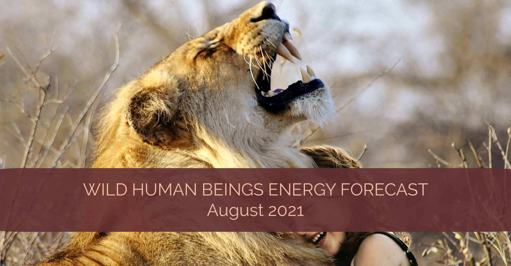 Wild Human Beings Energy Forecast August 2021